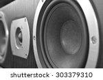 center speaker close up.... | Shutterstock . vector #303379310