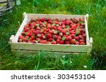 crate of red strawberry  | Shutterstock . vector #303453104