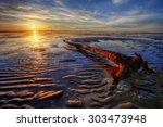log left by the beach | Shutterstock . vector #303473948
