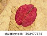 pink petal and leaf pressed on... | Shutterstock . vector #303477878