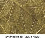 Gold Leaf Skeleton Background...