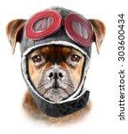 Boxer Dog Boxer Dog...