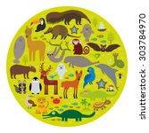 south america sloth anteater...   Shutterstock .eps vector #303784970