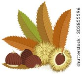 sweet chestnuts with leaves and ... | Shutterstock .eps vector #303855596