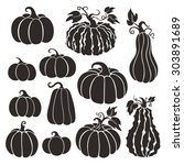 pumpkins collection  various... | Shutterstock .eps vector #303891689