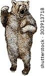 angry bear. a vector... | Shutterstock .eps vector #303913718