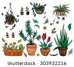 pot plants set  vector... | Shutterstock .eps vector #303932216