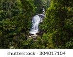 Tropical Rain Forest Landscape...