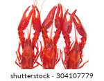 lobster on a white background | Shutterstock . vector #304107779