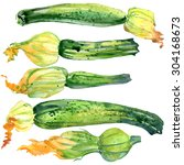 green zucchini watercolor... | Shutterstock . vector #304168673