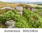 view of shaftoe craggs. ... | Shutterstock . vector #304214816
