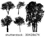 vector trees | Shutterstock .eps vector #30428674