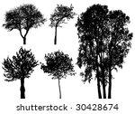 vector trees   Shutterstock .eps vector #30428674