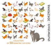 Stock vector vector image of a big set of cat isometric icons 304290446