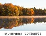 Deciduous Forest In Autumn...