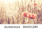 Retro Toned Poppy Flowers At...