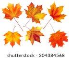 Colorful Autumn Maple Leaves...