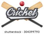 vector illustration of cricket... | Shutterstock .eps vector #304399793