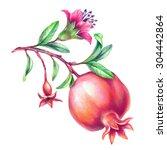 Beautiful Pomegranate...