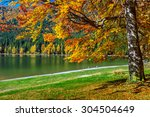 Autumn Forest Landscape And...