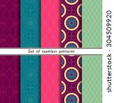 set of seamless color patterns  ... | Shutterstock .eps vector #304509920