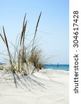 Beach Scene With Wild Grass On...