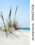 Beach Scene With Wild Grass On...