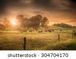 farmland summer scene in sunset | Shutterstock . vector #304704170