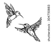 hummingbirds. isolated vector | Shutterstock .eps vector #304750883