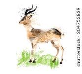 watercolor flamingos | Shutterstock .eps vector #304752839