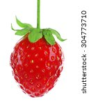 fresh strawberry isolated on... | Shutterstock . vector #304773710
