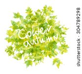 autumn leaves background.... | Shutterstock . vector #304789298