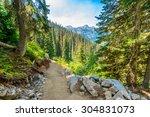Beautiful Mountain Trail View...