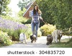 Stock photo professional dog walker exercising dogs in park 304835720