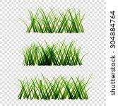 green grass on isolated... | Shutterstock .eps vector #304884764
