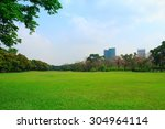 green grass field in big city... | Shutterstock . vector #304964114