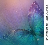 Stock photo vintage background with butterfly 305002466