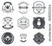 set of fitness and bodybuilding ... | Shutterstock .eps vector #305052314