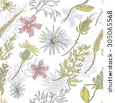 tender meadow seamless pattern .... | Shutterstock .eps vector #305065568