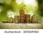 plant growth on coin pile ... | Shutterstock . vector #305069483