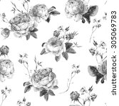 black and white vintage floral... | Shutterstock .eps vector #305069783