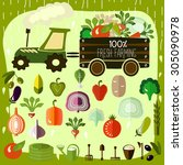 organic products. vector... | Shutterstock .eps vector #305090978