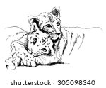 hand sketch lioness with cub