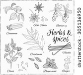 vector hand drawn set with... | Shutterstock .eps vector #305136950