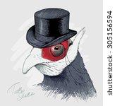 interesting bird in black top... | Shutterstock .eps vector #305156594