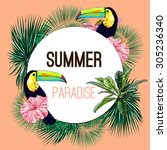 summer paradise  toucan ... | Shutterstock .eps vector #305236340