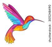 colorful colibri. hummingbird.... | Shutterstock .eps vector #305248490