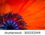 Background Made Of Red Poppy...