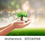 environmental service concept ...   Shutterstock . vector #305260568