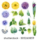 set of isolated elements of... | Shutterstock . vector #305263859